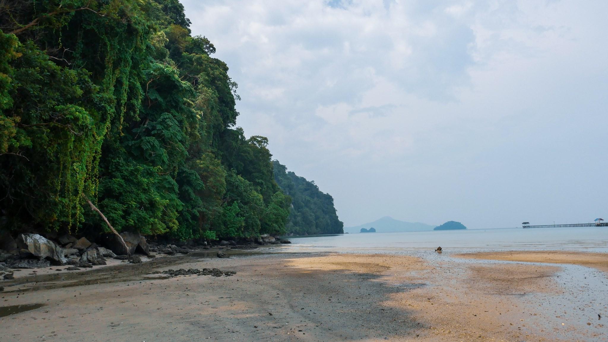 jungle and beach pulau tuba dva batohy