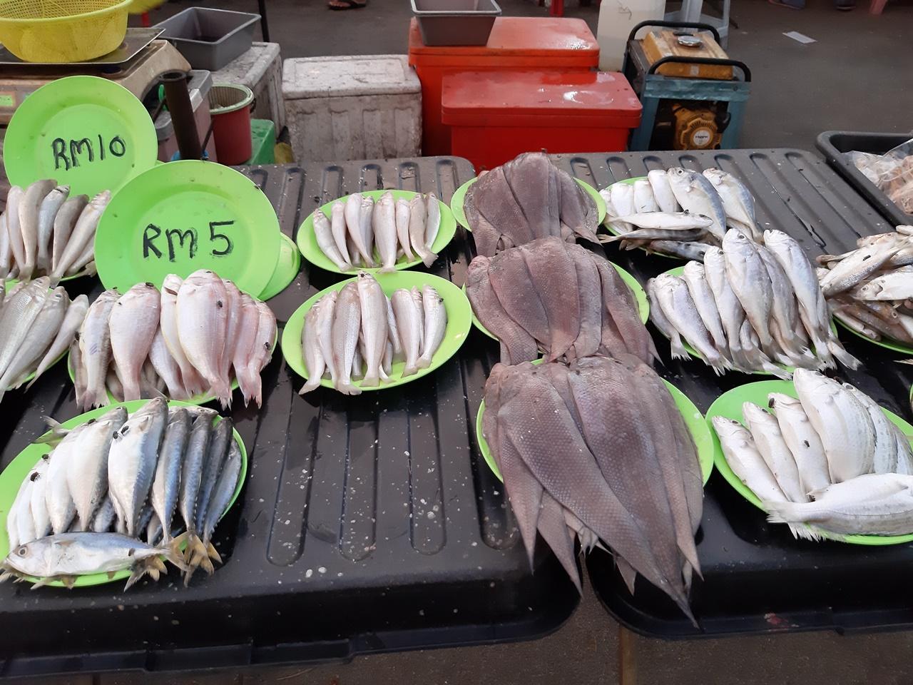čerstvé ryby na pulte