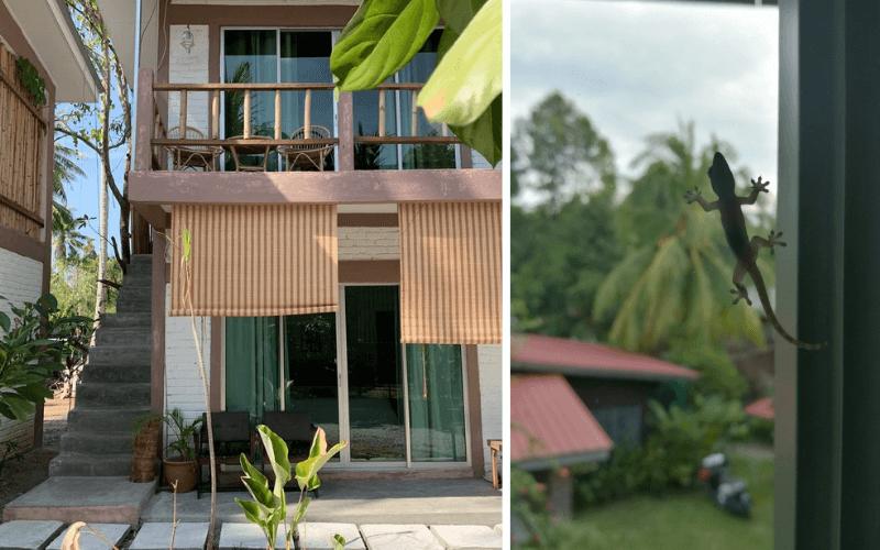 JV Ázia – 2. časť: Ubytovanie na Langkawi a prvé dni v tomto raji