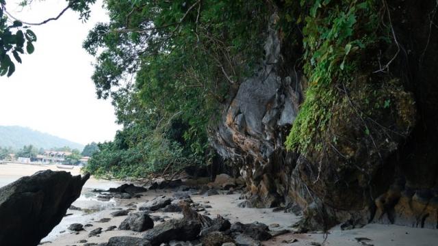 pulau-tuba-dzungla